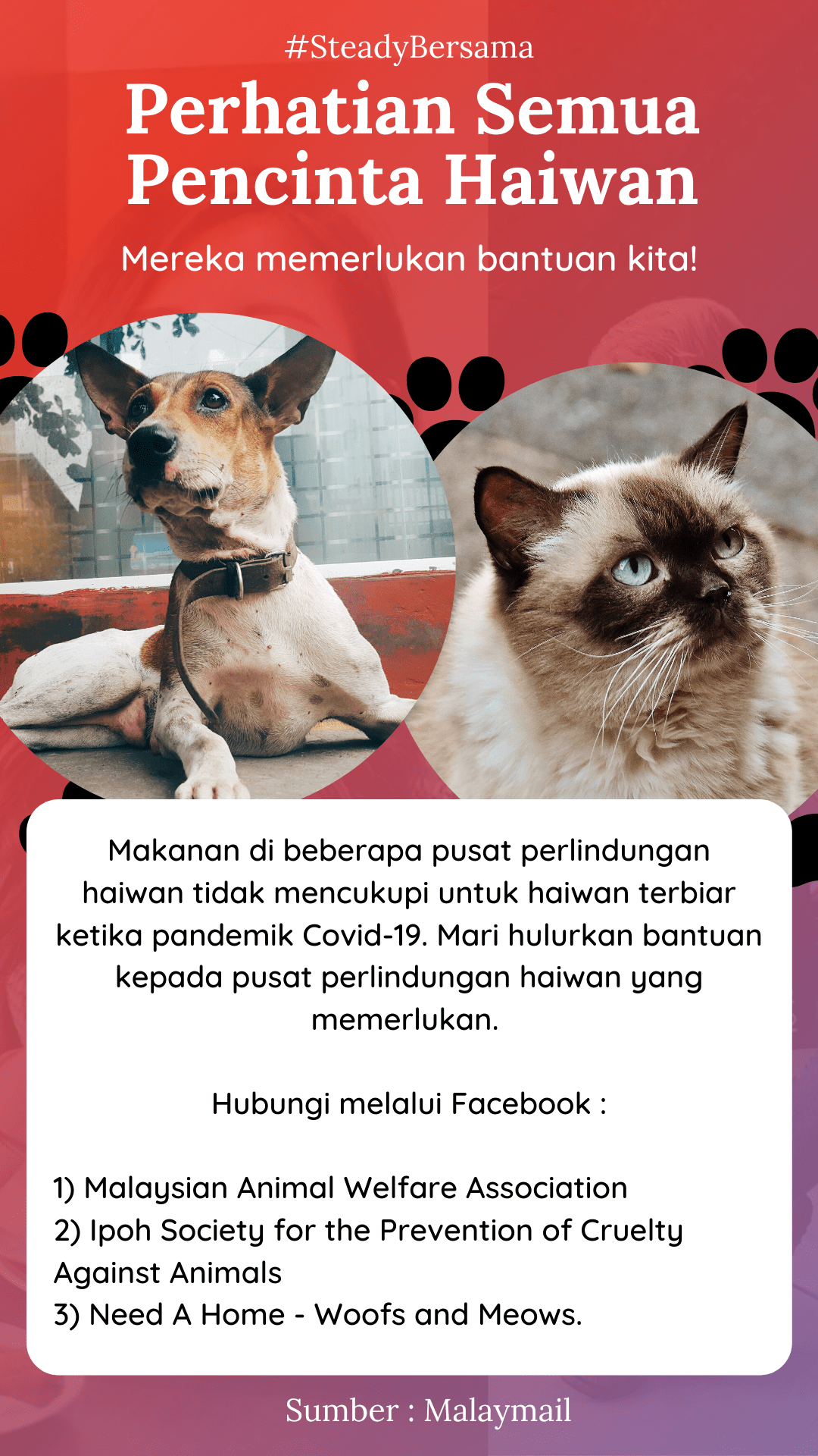 Material - SushiVid+Covid+19+Aid+-+Animal-Shelter+(Malay)